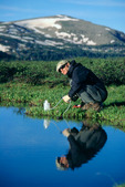 Robert Himber filtering water on the Continental Divide Trail above Snowslide Canyon, Weminuche Wilderness, Colorado