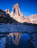 Druid Arch reflected in a pothole, Elephant Canyon, Needles District, Canyonlands National Park, Utah