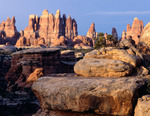 Elephant Canyon at sunrise, Needles District, Canyonlands National Park, Utah