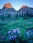 Columbine and Vestal and Arrow peaks, Vestal Basin, Weminuche Wilderness, Colorado