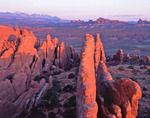 The Fiery Furnace and La Sal Mountains, Arches National Park, Utah