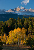 Longs Peak and aspen from Beaver Meadow in late September, Rocky Mountain National Park,  Colorado
