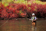 Chris Wall fishing the Fryingpan River, near Aspen, Colorado