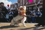 Canine fashion show with $20,000 in prizes, Winterskol, Aspen, Colorado, January, 2008