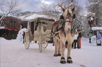 Horse-drawn carriage on Mill St. Mall, Aspen, Colorado