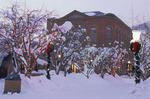 Christmas lights and the Wheeler Opera House, downtown Aspen, Colorado