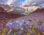 Clearing storm over the Needle Mountains, Weminuche Wilderness, Colorado