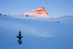 Wind-sculpted snow and 14,309-foot Uncompahgre Peak at sunrise from Nellie Creek basin, Uncompahgre Wilderness, Colorado