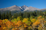 Longs Peak from aspen grove on the western flank of Twin Sisters in autumn, Rocky Mountain National Park, Colorado