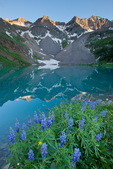 Dallas Peak, Blue Lake and lupine, Mount Sneffels Wilderness, San Juan Mountains, Colorado