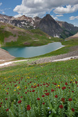 Roseroot, the Sneffels Range and upper Blue Lake, Mount Sneffels Wilderness, San Juan Mountains, Colorado