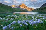 Peak 13,242, columbine and middle Blue Lake, Mount Sneffels Wilderness, San Juan Mountains, Colorado