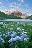 Peak 13,242, columbine and middle Blue Lake, Mount Sneffels Wilderness, San Juan Mountains, Colorado