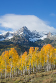 Peak 13,134 and aspen in fall color, Sneffels Range, San Juan Mountains, Colorado