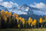 Mears Peak and aspen in Box Factory Park, Sneffels Range, San Juan Mountains, Colorado