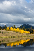 Beaver Lake and aspen, near Silver Jack Reservoir, San Juan Mountains, Colorado