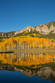 Aspen reflected in Clear Lake, near Silver Jack Reservoir, San Juan Mountains, Colorado