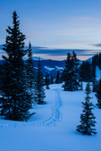 Snowshoe tracks at sunset on Black Face, Lizard Head Wilderness, San Juan  Mountains, Uncompahgre National Forest, Colorado
