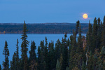 Moonrise over Prelude Lake, Prelude Lake Territorial Park, along the Ingraham Trail near Yellowknife, Northwest Territory, Canada