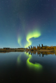 Aurora over beaver pond at Powder Point, an arm of Prelude Lake, Hidden Lake Territorial Park, along the Ingraham Trail near Yellowknife, Northwest Territory, Canada