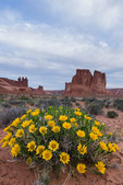 Rough mule's ears and The Organ, Arches National Park, Utah