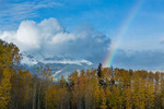 Wilson Peak and rainbow over aspen grove near the Telluride Mountain Village, San Juan Mountains, Colorado