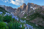 Columbine, kings crown, and the Turret Needles from Ruby Basin, Weminuche Wilderness, Colorado