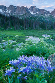 Columbine, Needle Ridge, Peak Eleven, Twin Thumbs, Glacier Point, and North Eolus, Weminuche Wilderness, Colorado