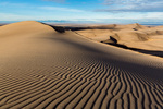Wind-rippled sand near the summit of High Dune, Great Sand Dunes National Park, Colorado