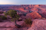 Sunrise at Dead Horse Point, Dead Horse Point State Park, Utah
