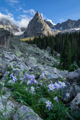 Clearing storm over columbine and Lone Eagle Peak, Indian Peaks Wilderness, Colorado