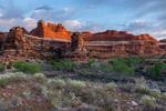 Lower Salt Creek Canyon at sunrise, Needles district, Canyonlands National Park, Utah