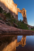 Angel Arch reflected in a water-filled pothole, Needles District, Canyonlands National Park, Utah