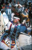 Seminole Dancer