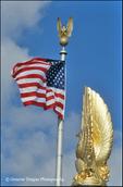 Patriot Eagles