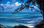 Island Colours