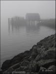 Fog & Fish Market