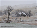 Winter Farmscape 04