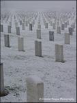Black Hills National Cemetery 03(v)