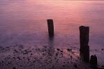 sunrise on beach pebbles and old dock posts