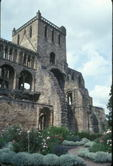 Herb garden at Jedburgh Abbey,