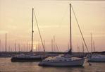 Sunrise over the harbor at Vineyard Haven, Martha's Vineyard, MA