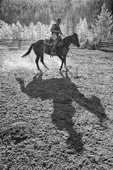 Cowboy training horse in corral with shadow.  Bighorn Mountains, Wyoming.