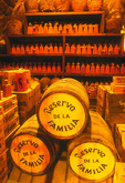 The real Family Reserve cellar, Jose Cuervo distillery, Tequila, Jalisco, Mexico