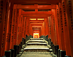 Torii (arches) at Fushimi Temple, Kyoto, Japan