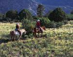 Horseback riding in Granite Mountain Wilderness, Prescott, Arizona
