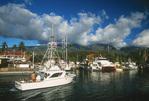 fishing boat returns to harbor, Lahaina, Maui, Hawaii
