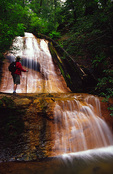 Hiker admires Golden Cascade Falls, Big Basin State Park, California