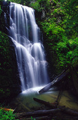 Berry Creek Falls, Big Basin State Park, California