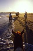 Horseback riding on the beach, near the Estuary, San Jose del Cabo, Baja California Sur, Mexico